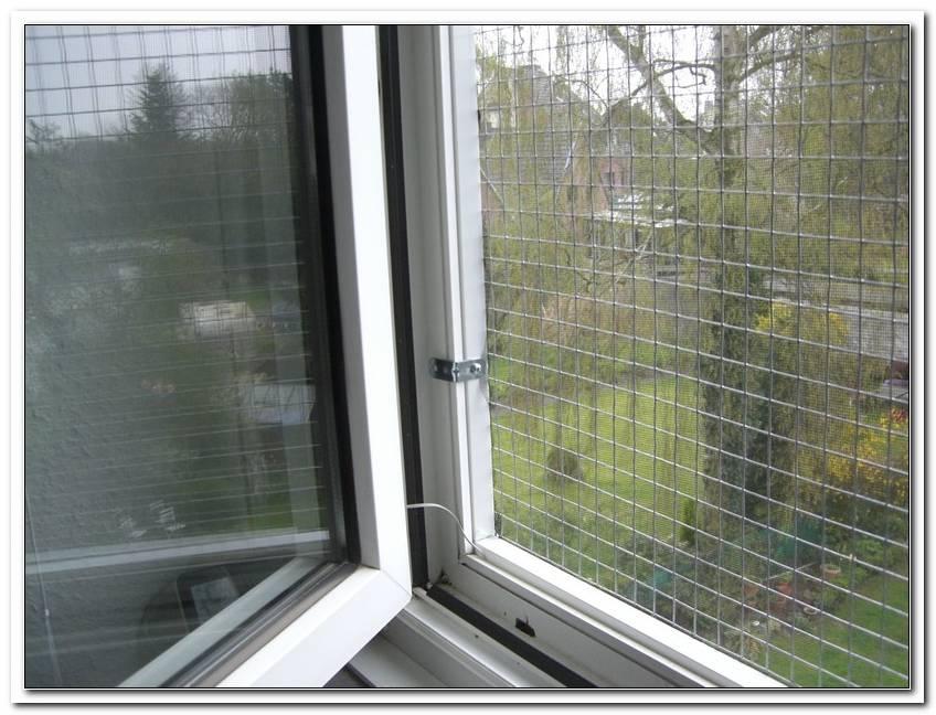Sicherheit F?R Katzen Fenster