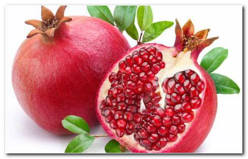 Slice Of Pomegranate HD Wallpaper