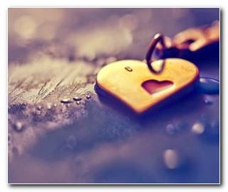 Soar con Amor