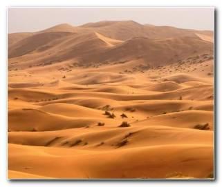 So?ar Con Desiertos