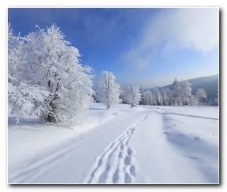So?ar Con Nieve