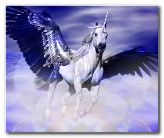 So?ar Con Pegaso