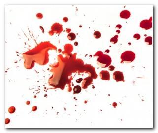 So?ar Con Sangre