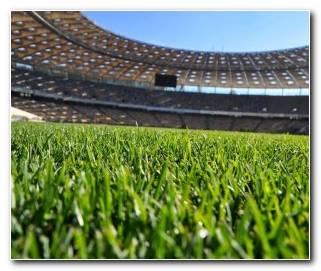So?ar Con Campo De F?tbol