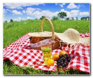 So?ar Con Un Picnic
