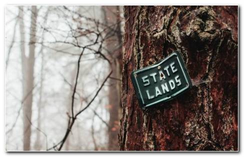 State Land Board On Tree