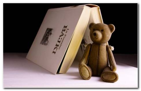 Stuff Bear And A Book Bajki