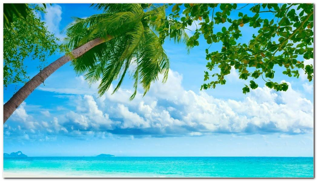 Summer Beach Desktop Backgrounds Wallpaper