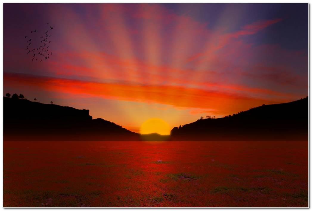 Sunset In Summer Background