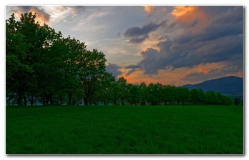 Sunset Meadow HD Wallpaper