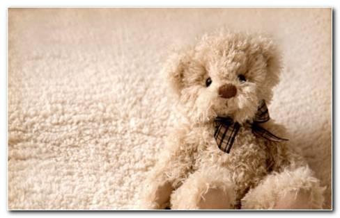 Teddy sitting on foam HD wallpaper
