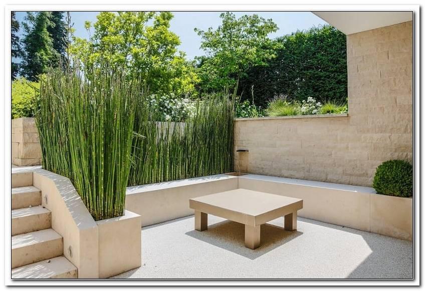 Terrasse Sichtschutz Pflanzen