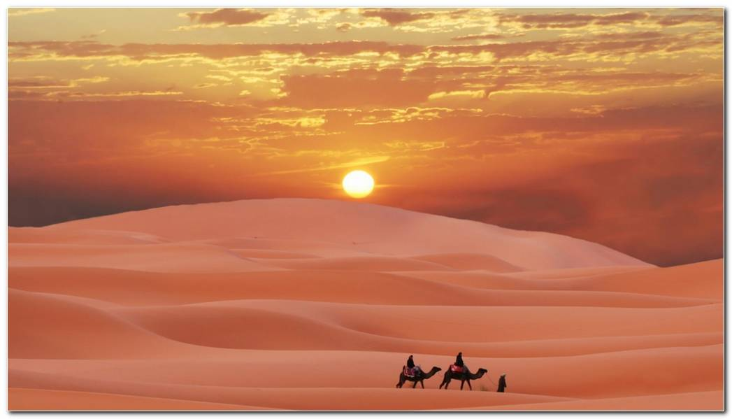 Top Desert Nature Wallpaper