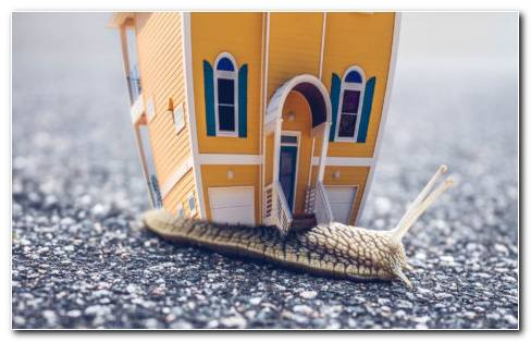 Toy house HD wallpaper