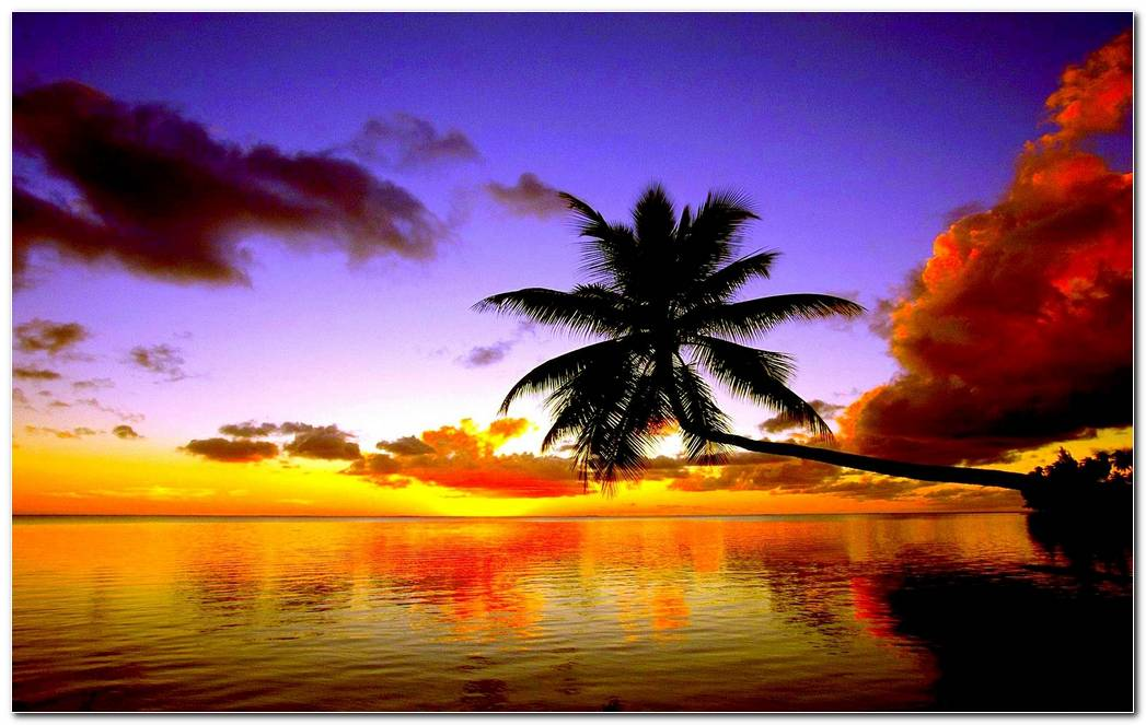 Tropical Beach Sunset Wallpaper