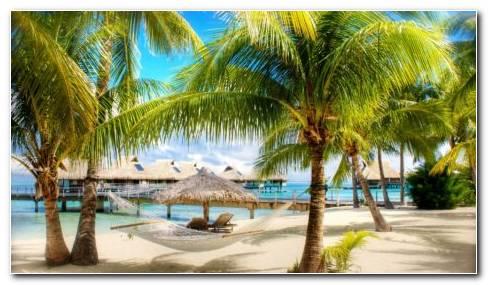 Tropical Beaches HD Wallpaper