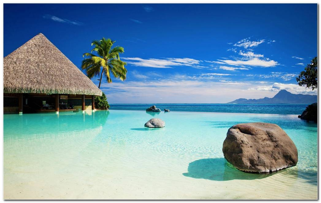 Tropical Nature Wallpaper Background Beach Resort