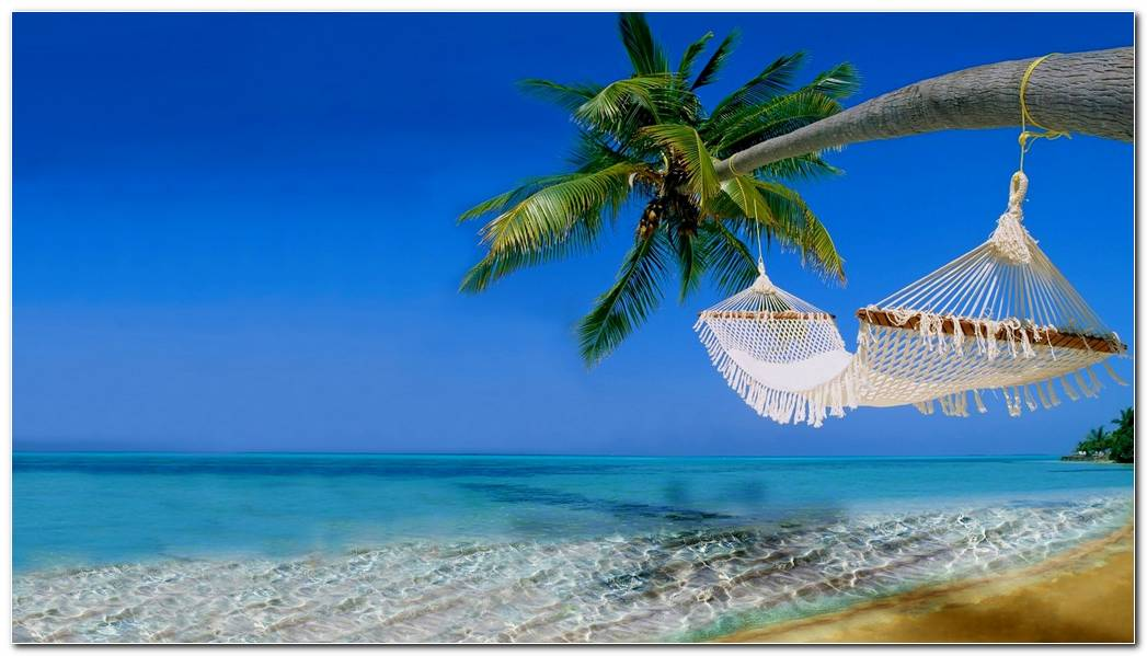 Tropical Scene Beach Nature Wallpaper Background
