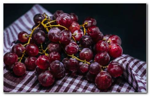 Types Of Grapes HD Wallpaper