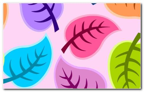 Vector Leaves HD Wallpaper