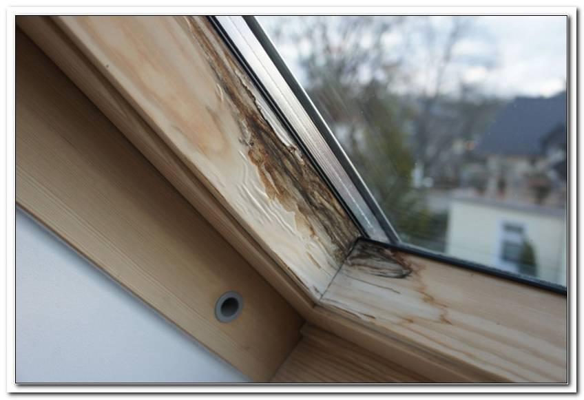 Velux Fenster Kunststoff Oder Holz