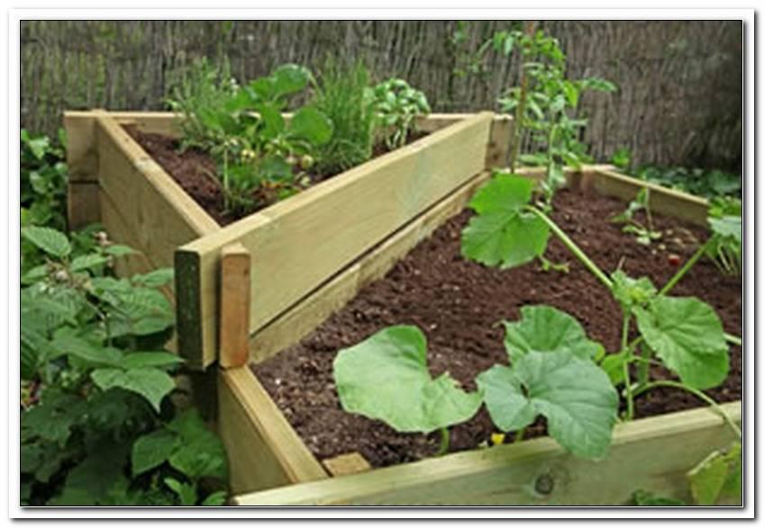 W?Hlm?Use Im Garten Bek?Mpfen