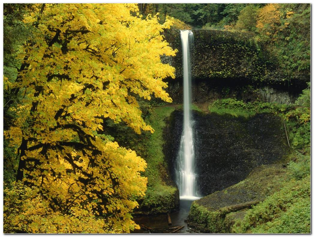 Waterfall Autumn Wallpaper