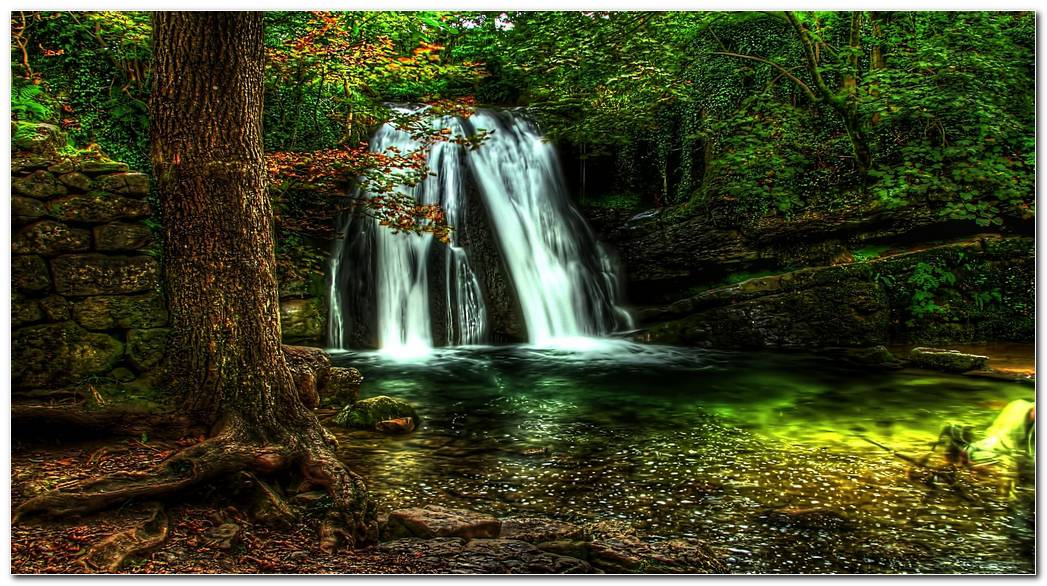 Waterfall Forest Wallpaper Nature
