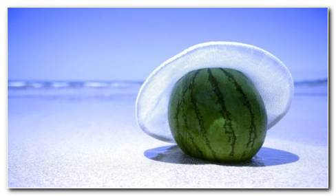 Watermelon With Hat HD Wallpaper