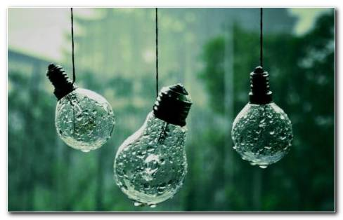 Wet Light Bulbs HD Wallpaper