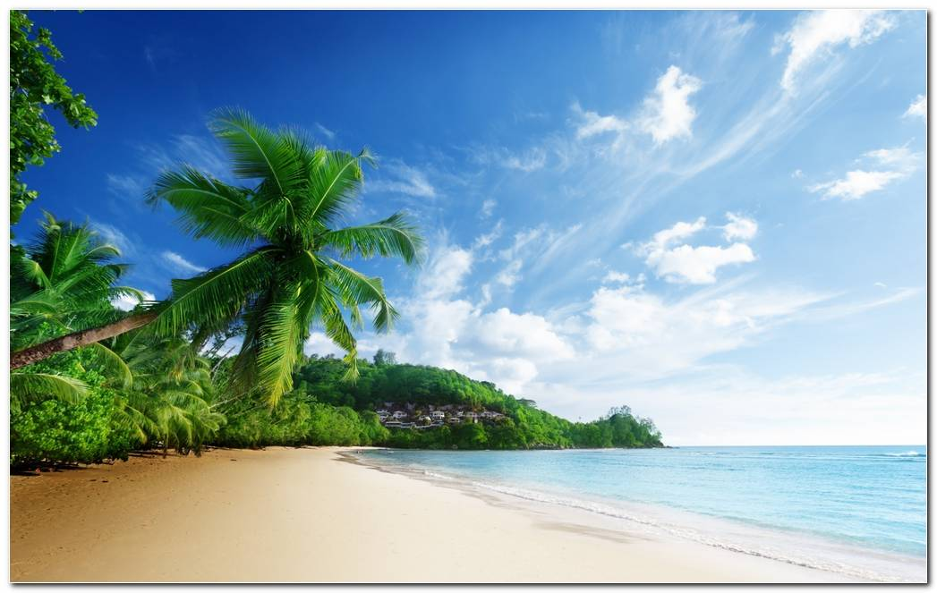 Widescreen Beach Tropical Nature Wallpaper Background Image