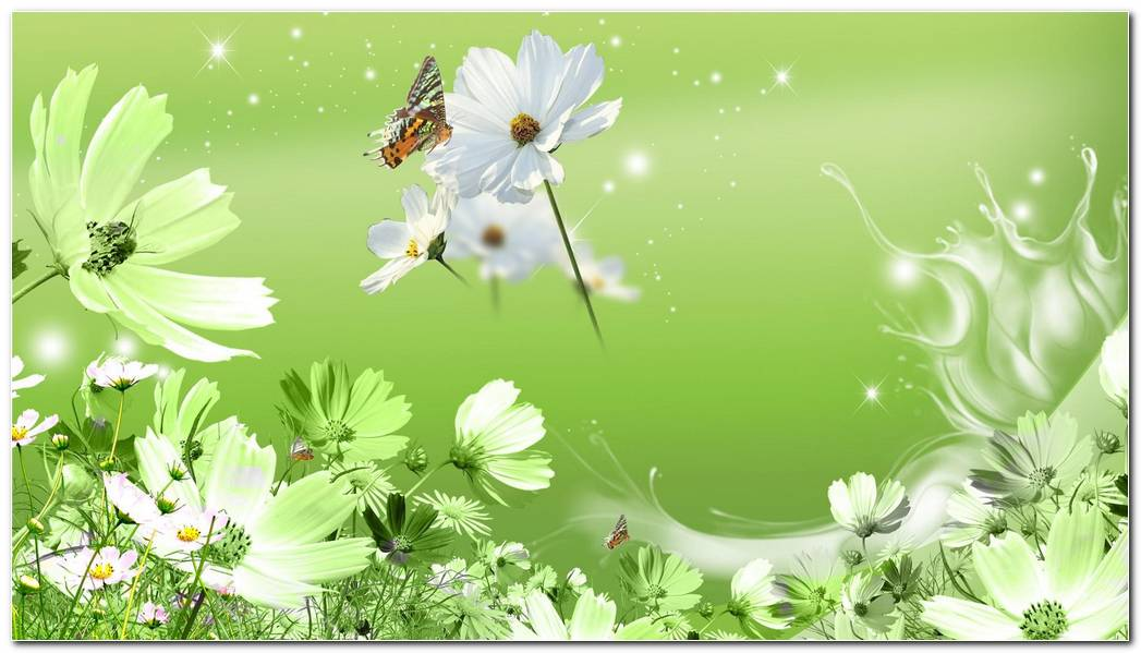 Wild Flowers Green Hd Wallpaper