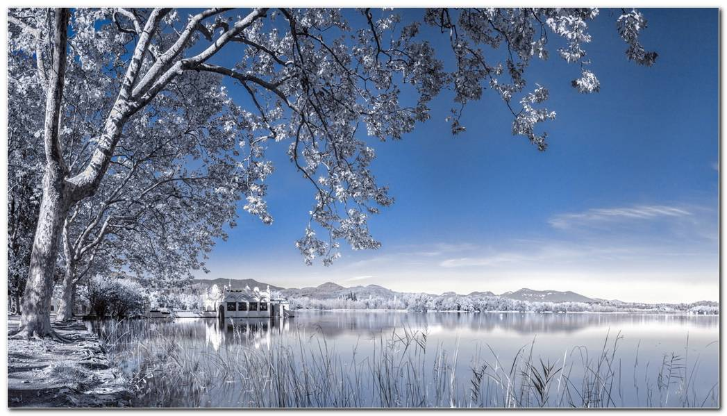 Winter Background Landscape Wallpaper