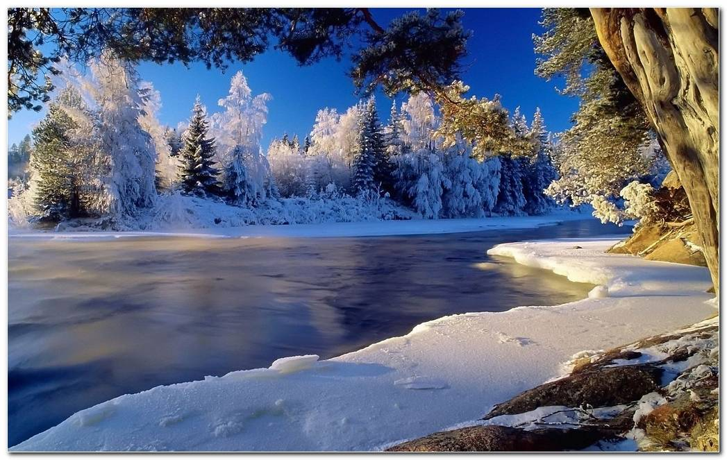 Winter Landscape Desktop Backgrounds HD4Wallpapernet 1920x1200