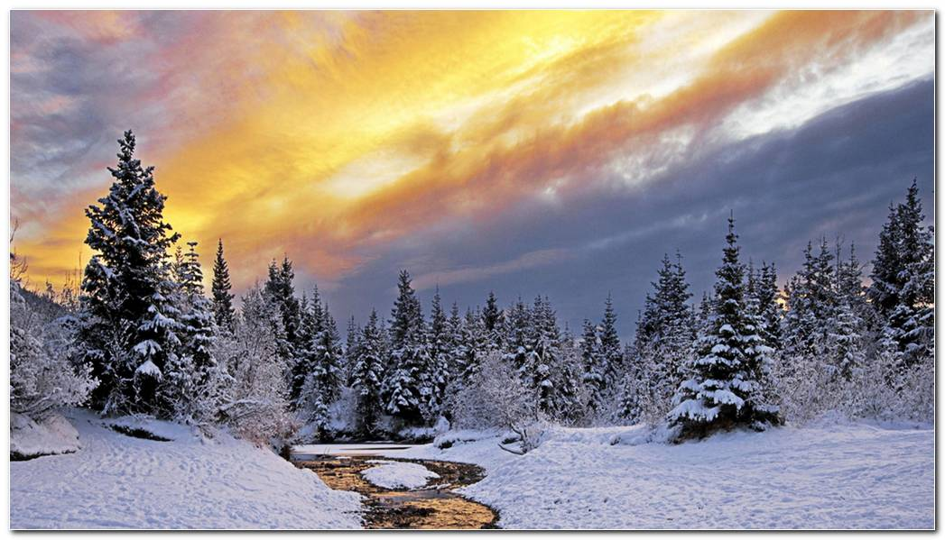 Winter Nature Snow Landscape River Nature Wallpaper Background