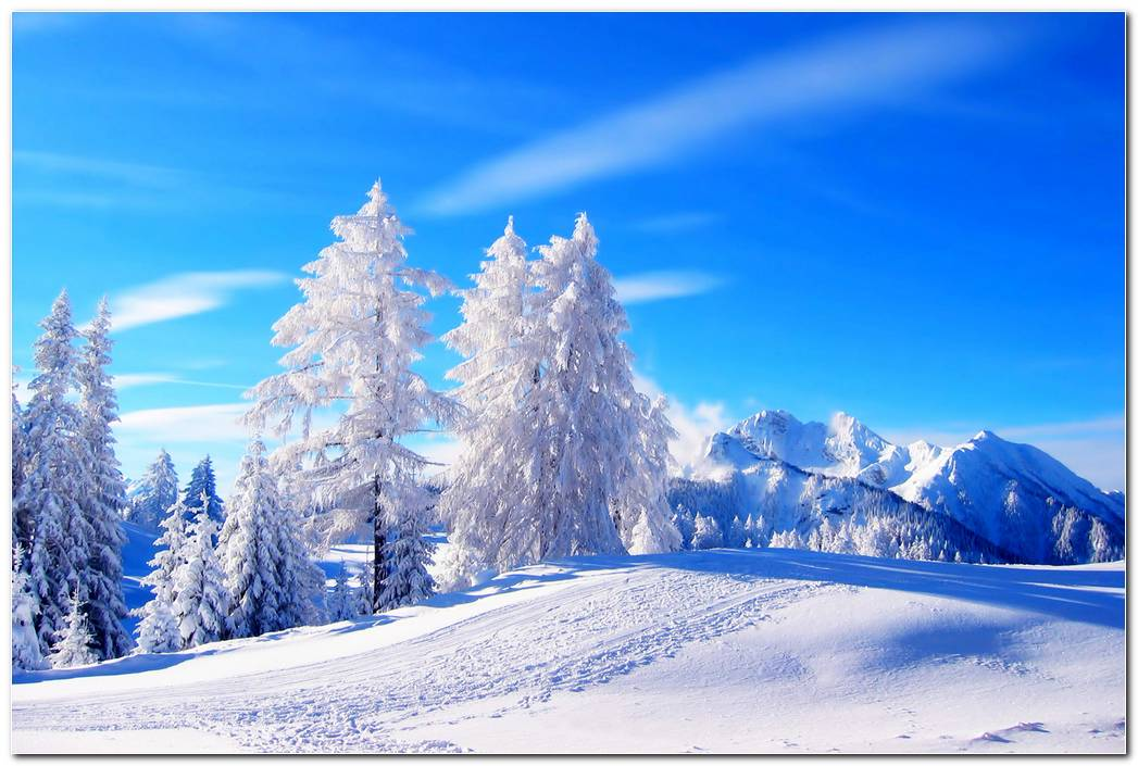 Winter Snow Background Wallpaper Image