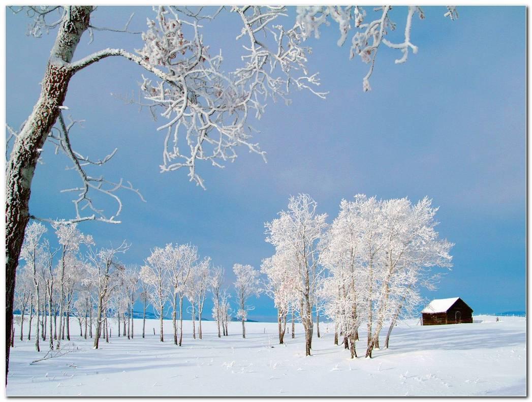 Winter Snow Desktop Backgrounds