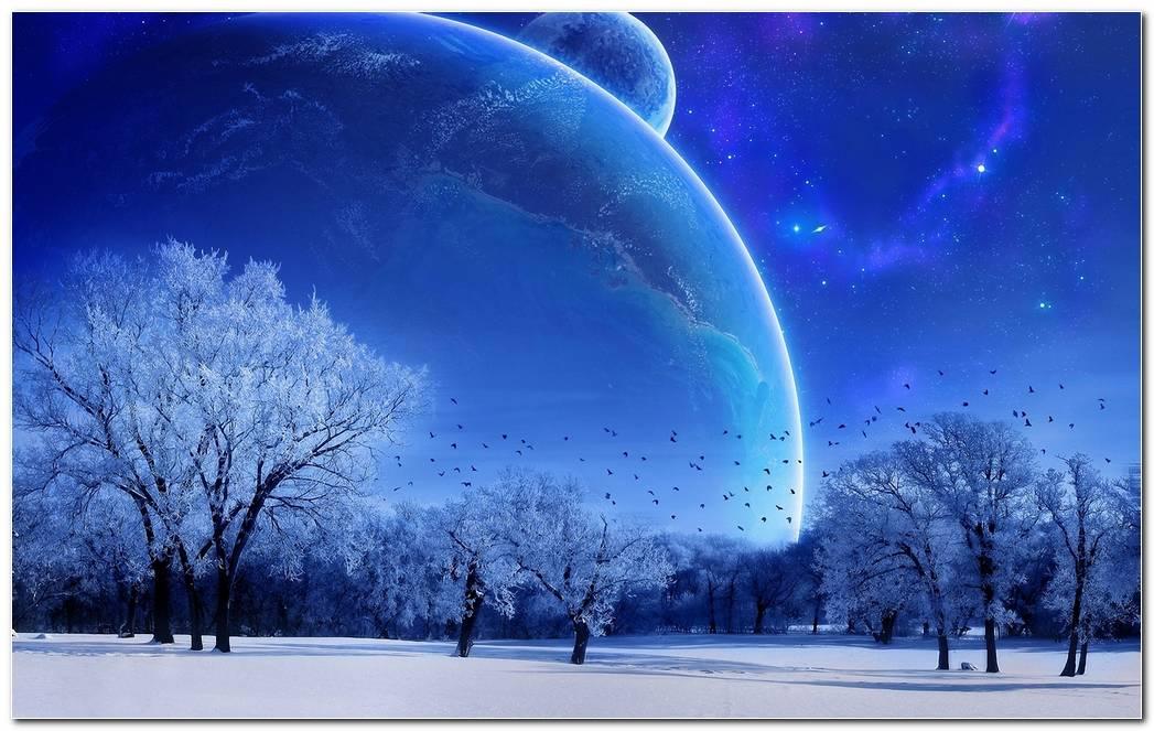 Winter Snow Nature Wallpaper Background Image Desktop
