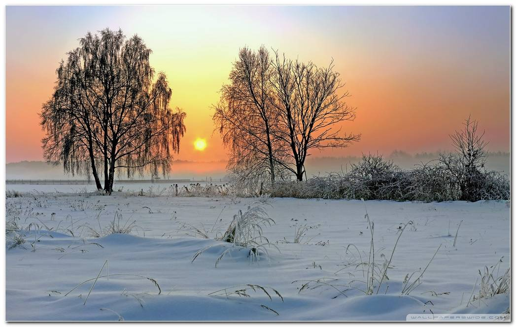 Winter Sunrise Wallpapers
