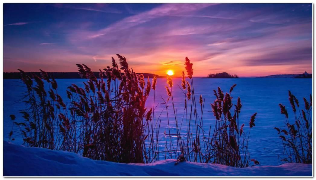 Winter Sunset Nature Wallpaper Background