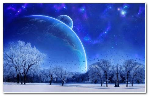 Winter Full Moon HD Wallpaper