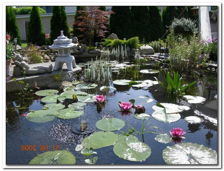 Wohnen Und Garten Geschenkabo