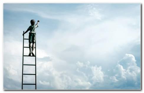 Wooden Step Ladder HD Wallpaper