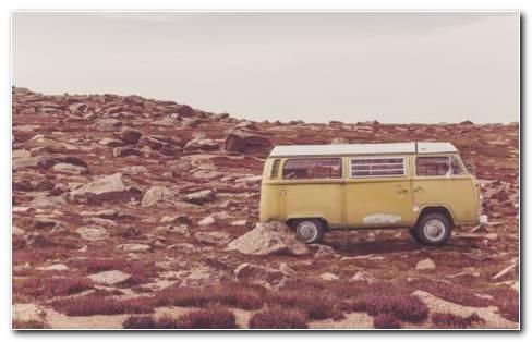 Yellow Bus HD Wallpaper