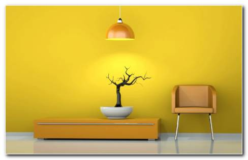 Yellow Room HD Wallpaper
