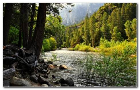Yosemite National Park HD Wallpaper
