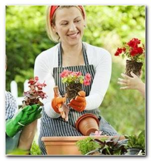 Actividades Infantiles Jardineria