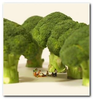 Bosque De Brocoli