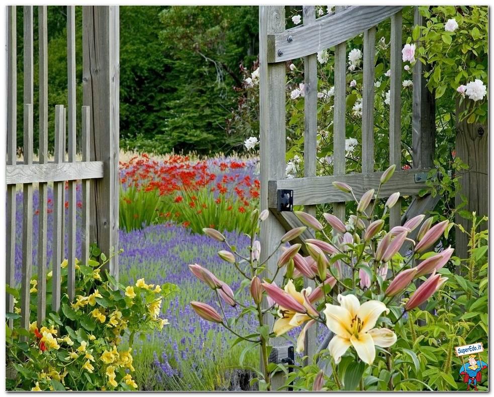 Botanical Gardens 002
