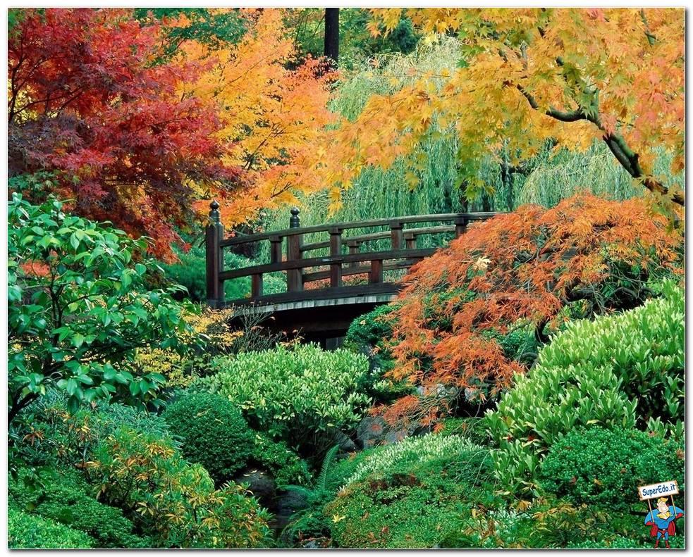 Botanical Gardens 009